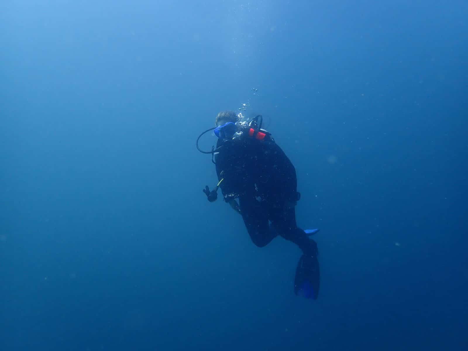 Diving kalpitiya