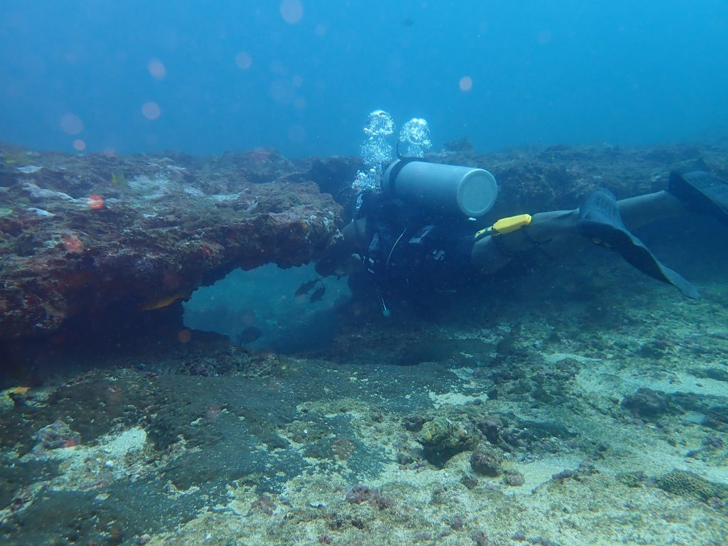 Diving in Sri Lanka - from discovery dives to advanced diving certification 4